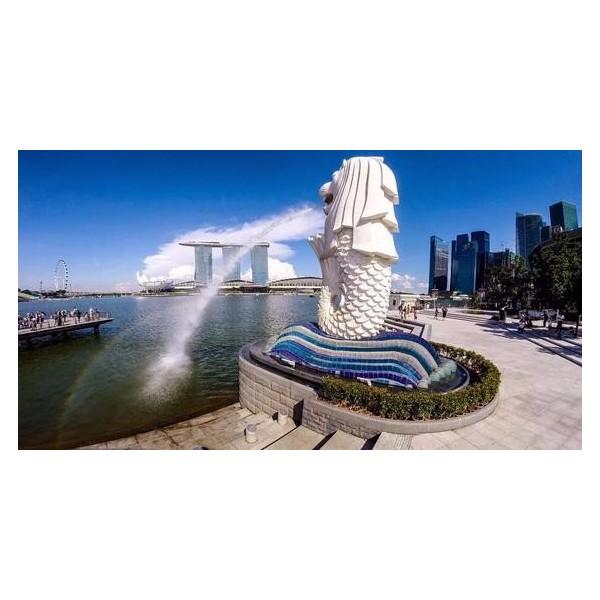 新加坡公司注册成功案例